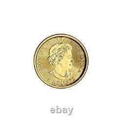 1/10 oz Random Year Canadian Polar Bear Gold Coin