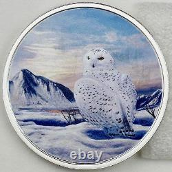 2018 $20 Arctic Animals Snowy Owl 2 oz Pure Silver Glow-in-the-Dark Color Proof