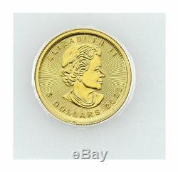 2020 Canada 1/10 oz Gold Maple Leaf $5 Coin GEM BU PRESALE SKU60074