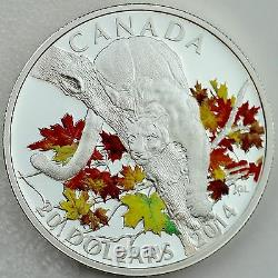 Canada 2014 $20 Cougar in Autumn Maple Tree 1 oz. Pure Silver Color Proof Coin