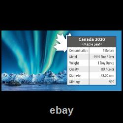 Polarlichter 2020 Maple Leaf 1 OZ Silber Nothern Lights Jasper National Park