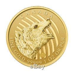 1 Oz 2016 Appel De La Série Sauvage Roaring Grizzly Gold Coin