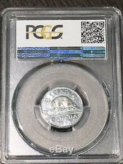 1953 Can 5c Pcgs Au50 (sf) Bracelet (fl) Loin Feuille Trueview Rickscafeamerican. Com
