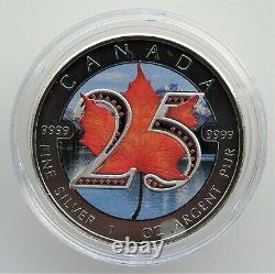 2013 Canada 25th Anniversary (. 9999) Pièces De Monnaie Feuille D'érable Argentées (ensemble Cased)