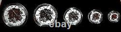 2014 Royal Canadian Mint Silver Maple Leaf Set 5 Pièces W Gold Leafs Rare & C. O. Un