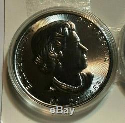 2017 50 $ Canada 10 Oz 9999 Fin Argent Grizzly Bear Coin, Bu Capsule