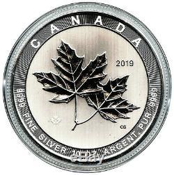 2019 50 $ Canada 10 Oz En Argent Fin Magnifique Feuilles D'érable Bu