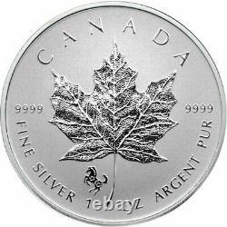 40pc 1998 2019 Encapsulés Maple Leaf Set Privy
