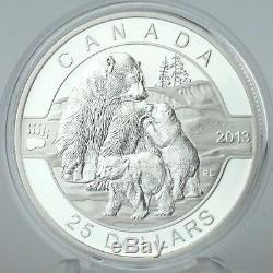 Canada 2013 25 $ Polar Bear 1 Oz 99,99% Pure Silver Preuve Pièce Commémorative
