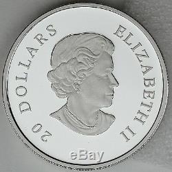 Canada 2013 D'hiver Flocon De Neige 1 Oz Pure Silver 20 $ Proof Coin, Crystal Swarovski