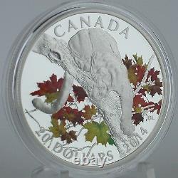 Canada 2014 20 $ Cougar À L'automne Maple Tree 1 Oz. Pièce De Preuve De Couleur D'argent Pur