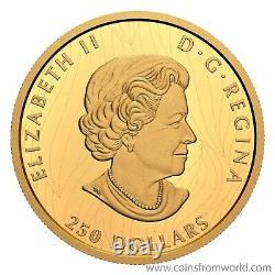 Canada 2020 250 $ Fier Pygargue À Tête Blanche 2 Oz Or Pur Monnaie Monnaie Royale Canadienne Dse