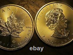 Canadian Silver Coin Original Roll 25 Oz (maple Leaf) 25 Pièces. 9999 Argent
