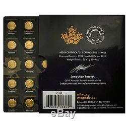 Maplegram Or 2019 Pièces Érable Rcm 25 X 1 G Feuille D'or Monnaie Royale Canadienne