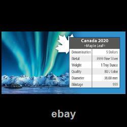 Polarlichter 2020 Feuille D'érable 1 Oz Silber Nothern Lights Jasper National Park